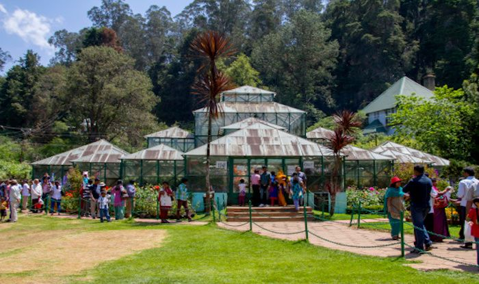 What to Expect at The Ooty Summer Festival This Year