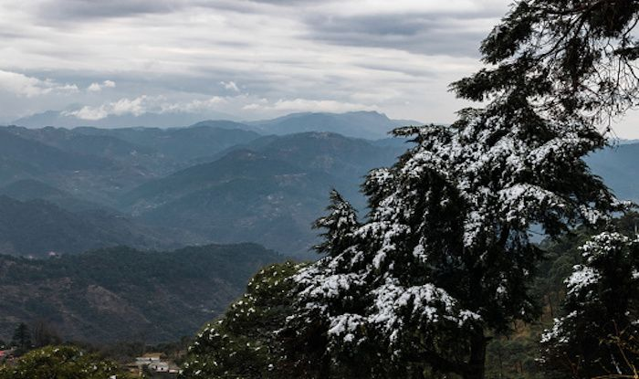 Kasauli: A Perfect Hilly Retreat From Delhi