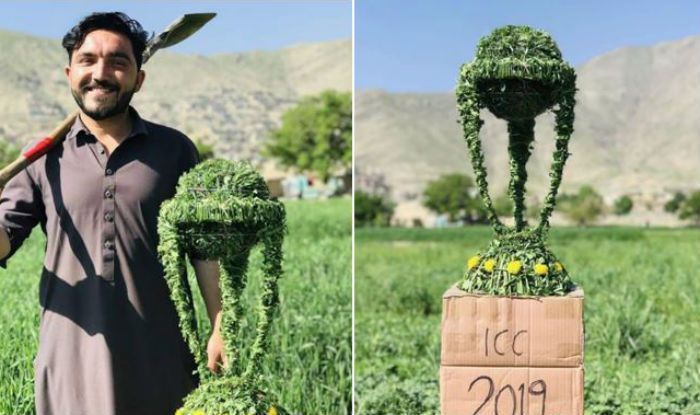 ICC Cricket World Cup Trophy Made With Grass by Afghan Fan Will Definitely Impress You