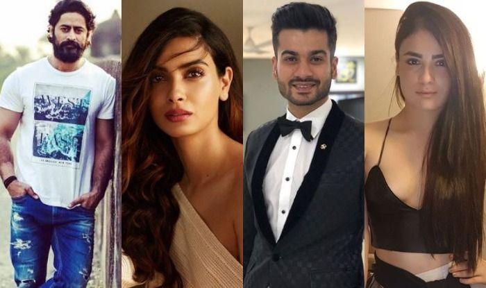 Sunny Kaushal, Radhika Madan, Mohit Raina and Diana Penty