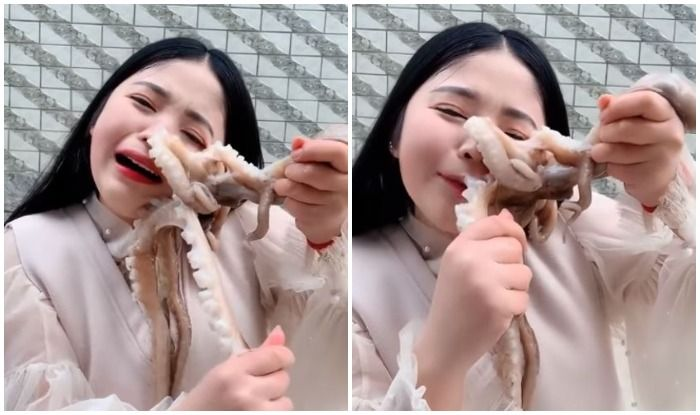 Octopus Bites Chinese Blogger's Face as She Tries to Eat it Alive, Watch Viral Video