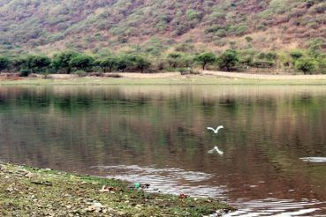 Travellers who love riding around freshwater lakes, can take a quick 30-minute drive to reach Lake Badi