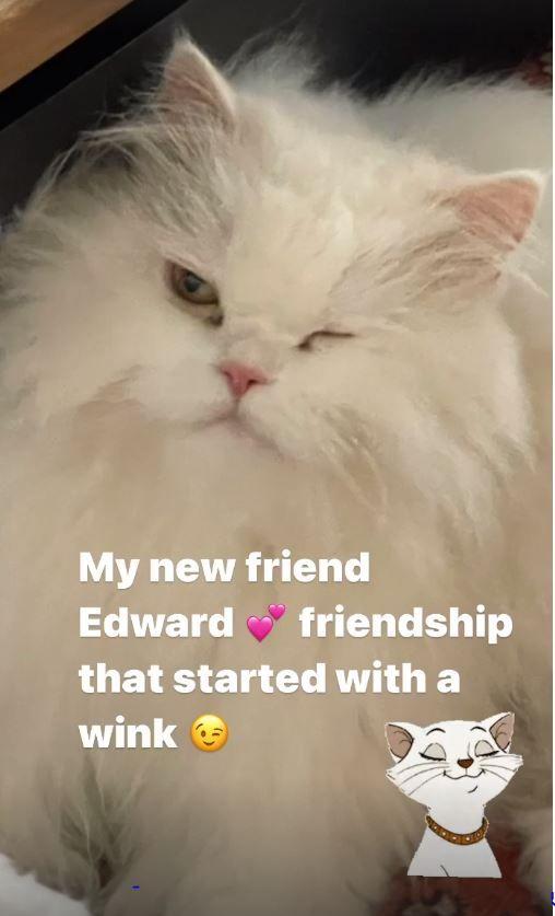 Neetu Kapoor has a new friend Edward