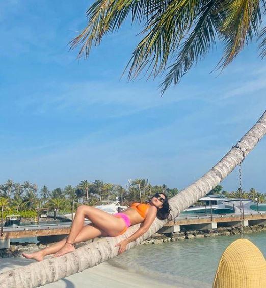 Sara Ali Khan Poses On Palm Tree Branch In Orange-Pink Bikini Photo Credit: Instagram/@ saraalikhan95